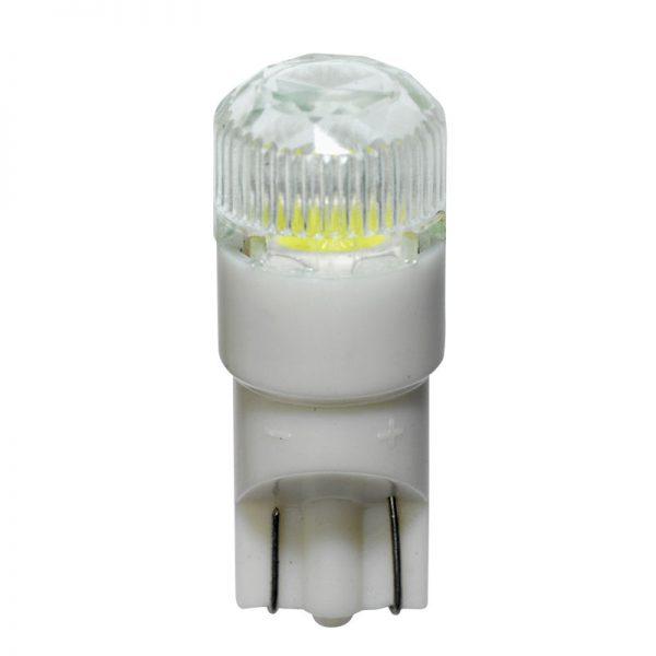LED Xenon White T-10 +Cap 12V 2stuks